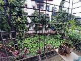 Photo 1BHK+2T (630 sq ft) Apartment in Thane West,...