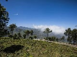Photo Plots Plot in Coonoor, Ooty