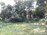 Photo Residential Plot / Land for sale in Alwaye,...