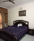 Photo 1BHK+2T (500 sq ft) Apartment in Greater...