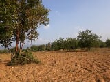 Photo Plots Plot in Mettupatti, Dindigul