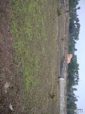 Photo 4000 Sq. ft Plot for Sale in Puri