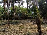 Photo 26136 Sq. ft Plot for Sale in Nellaya...