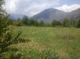 Photo 2120 Sq. ft Land for Sale in Bhuntar, Kullu