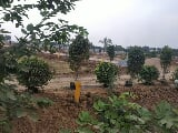 Photo Plots Plot in Bhimavaram, West Godavari