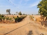 Photo 1 Bedroom Farm House for sale in Sohna, Gurgaon