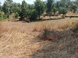 Photo 40000 Sq. ft Land for Sale in Mahad, Raigad