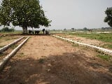 Photo Plots Plot in New Moradabad