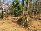 Photo 17421 Sq. ft Plot for Sale in Shoranur Road,...