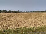 Photo 1800 Sq. ft Plot for Sale in Balasore