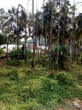 Photo 52270 Sq. ft Plot for Sale in Mannarkkad, Palakkad