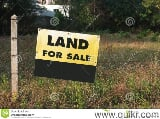 Photo 130680 Sq. ft Land for Sale in raip, Rewa