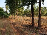 Photo 2178 Sq. ft Plot for Sale in Chiplun, Ratnagiri