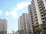 Photo 3 BHK Flats & Apartments for Sale in Dharuhera...