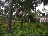 Photo 7405 Sq. ft Plot for Sale in Chiyyaram, Thrissur