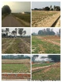 Photo 800 Sq. ft Plot for Sale in Raibareli Road,...