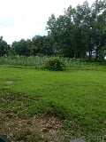 Photo 28000 Sq. ft Plot for Sale in Sawantwadi,...