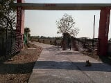 Photo 1250 Sq. ft Plot for Sale in Kuthla, Katni
